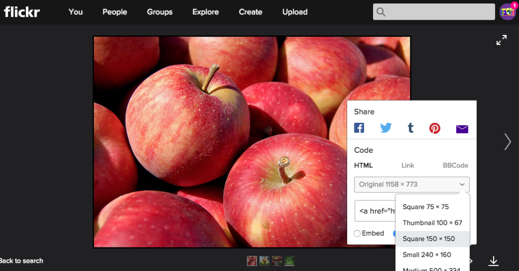 Flickrの画像を貼り付けるサイズを選ぶ